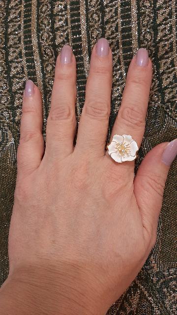 Красивый, белый цветок
