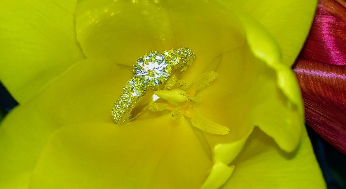 Прекрасный кольцо