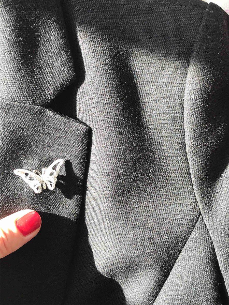 Серебряная бабочка