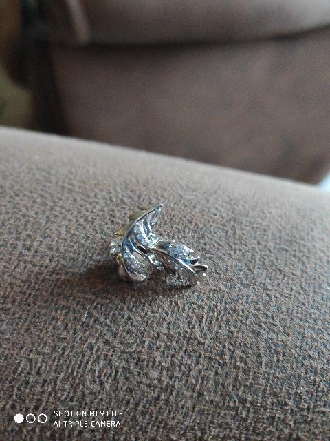 Серебрянные перышки.