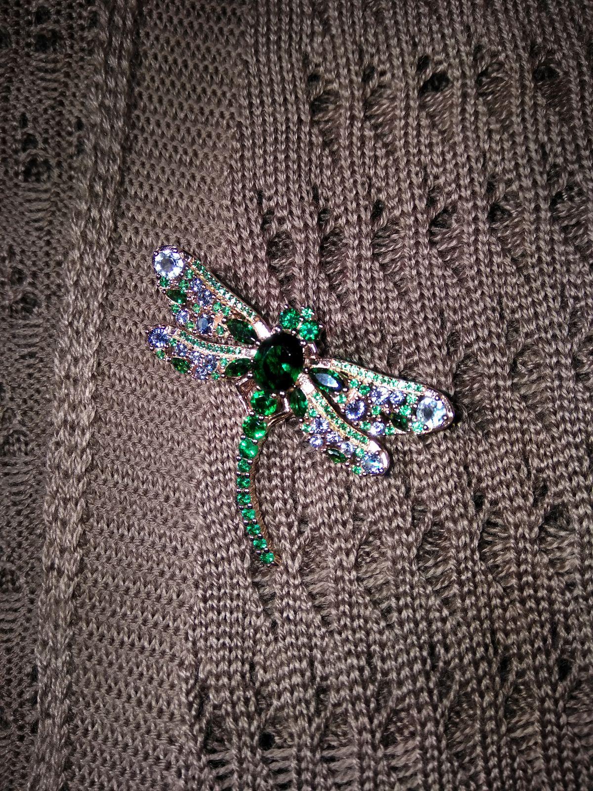 Красавица стрекоза